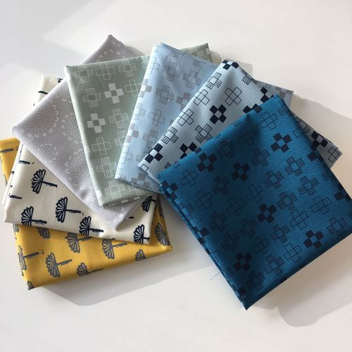 Fat Quarter Packung Blueberry Park